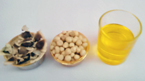 Organic Moringa Oil - Manufacturers, Suppliers & Exporters in India
