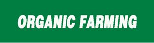 Moringa cake organic farming